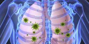 Возбудители и механизм передачи вирусов