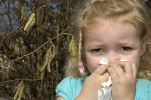 Как лечить аллергию на березу у ребенка?