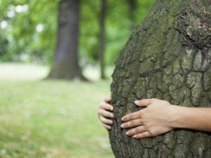 Природа возникновения болезни