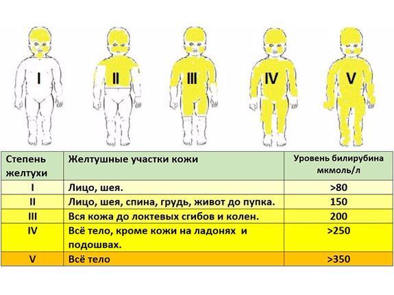 Норма показателей билирубина