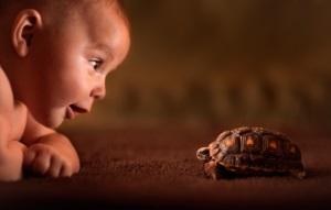 Аллергия на животных у детей - симптомы