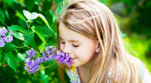 Что является аллергеном?