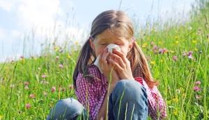 Аллергия на сорные травы у ребенка